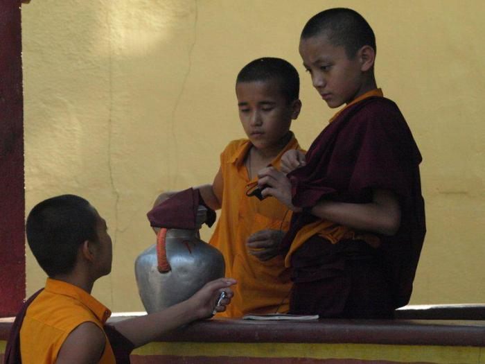 Peaceful young monks at Bailakuppe monastery. Photo by Sharadha NV