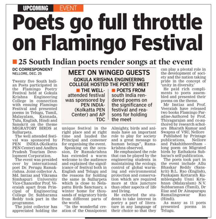 flamingo-festival