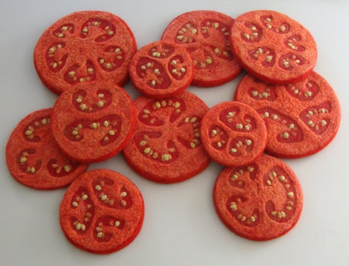 Image result for Image of six chambers in a tomato